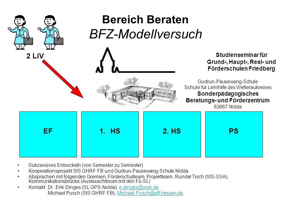 Bereich Beraten BFZ-Modellversuch Sukzessives Entwickeln (von Semester zu Semester) Kooperationsprojekt StS GHRF FB und Gudrun-Pausewang-Schule Nidda