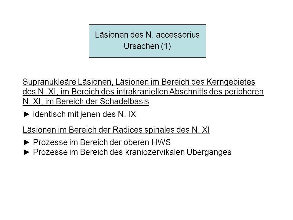 Läsionen des N. accessorius Ursachen (1) Supranukleäre Läsionen, Läsionen im Bereich des Kerngebietes des N. XI, im Bereich des intrakraniellen Abschn