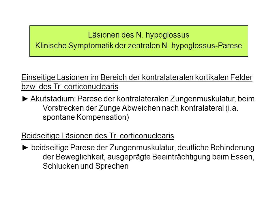 Läsionen des N. hypoglossus Klinische Symptomatik der zentralen N. hypoglossus-Parese Einseitige Läsionen im Bereich der kontralateralen kortikalen Fe