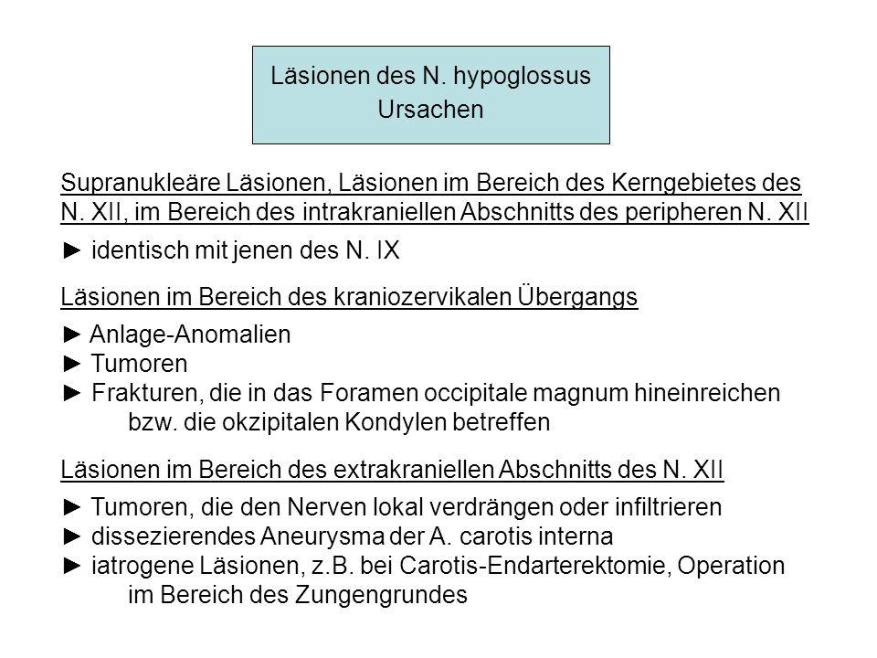 Läsionen des N. hypoglossus Ursachen Supranukleäre Läsionen, Läsionen im Bereich des Kerngebietes des N. XII, im Bereich des intrakraniellen Abschnitt