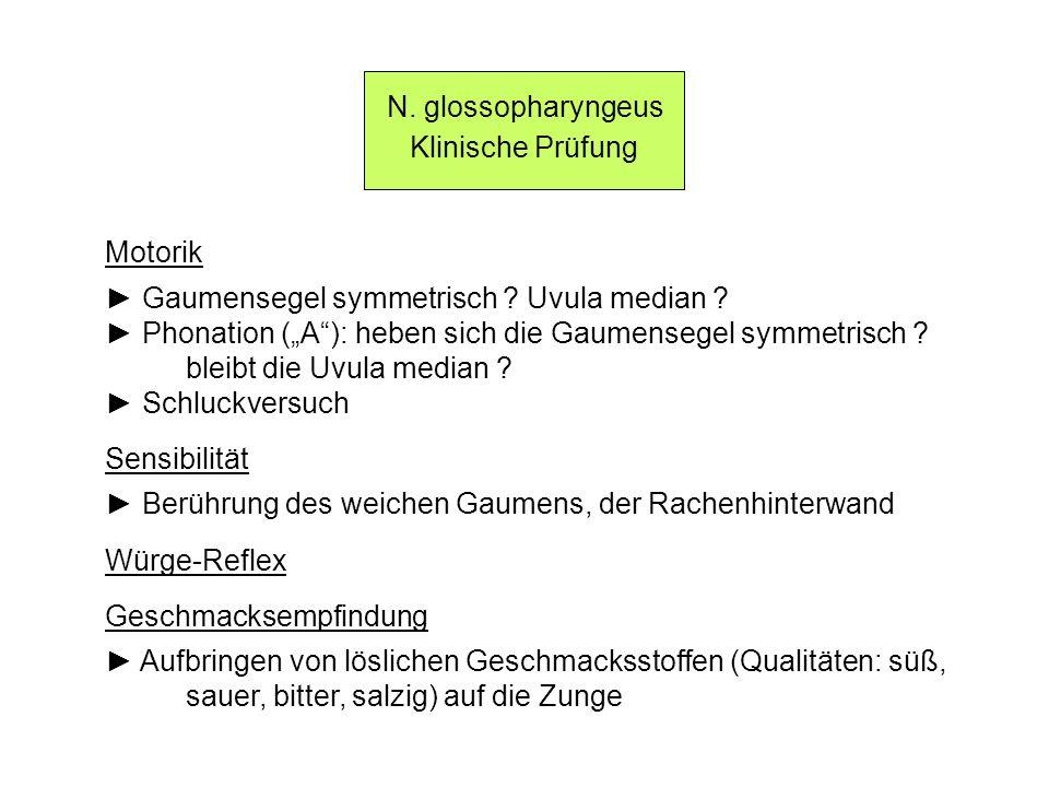 N. glossopharyngeus Klinische Prüfung Motorik Gaumensegel symmetrisch ? Uvula median ? Phonation (A): heben sich die Gaumensegel symmetrisch ? bleibt