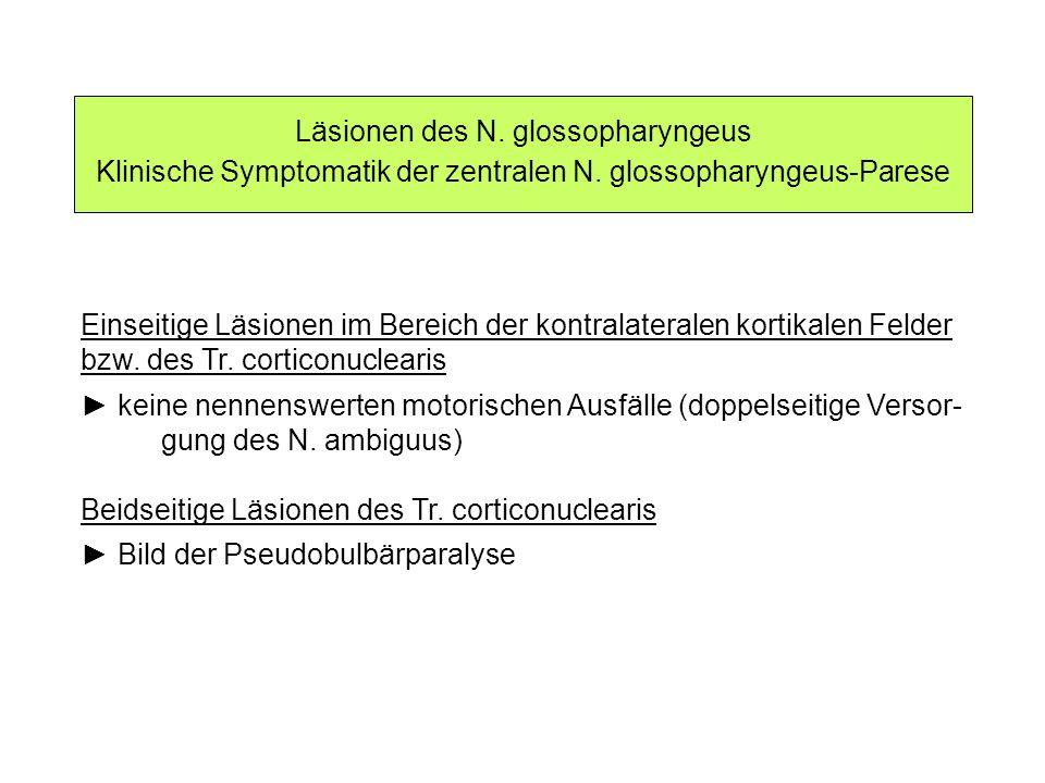 Läsionen des N. glossopharyngeus Klinische Symptomatik der zentralen N. glossopharyngeus-Parese Einseitige Läsionen im Bereich der kontralateralen kor
