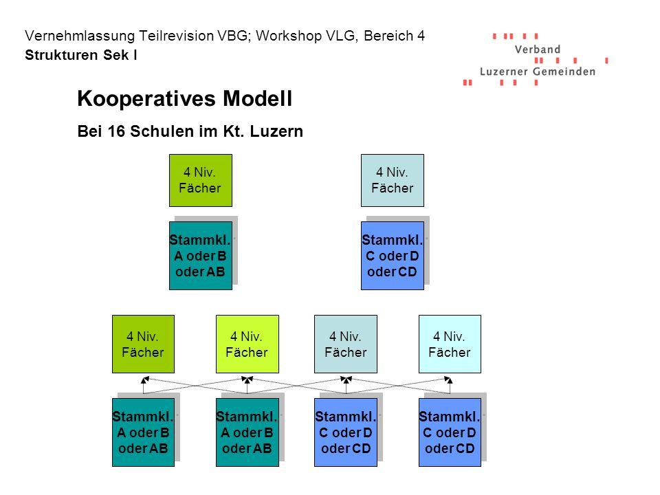 Vernehmlassung Teilrevision VBG; Workshop VLG, Bereich 4 Strukturen Sek I 4 Niv.