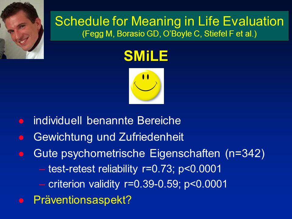 Schedule for Meaning in Life Evaluation (Fegg M, Borasio GD, OBoyle C, Stiefel F et al.) l individuell benannte Bereiche l Gewichtung und Zufriedenhei