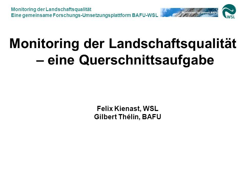 Monitoring der Landschaftsqualität Eine gemeinsame Forschungs-Umsetzungsplattform BAFU-WSL 12.9.2007, Felix Kienast WSL & Gilbert Thélin BAFU 2 Monito