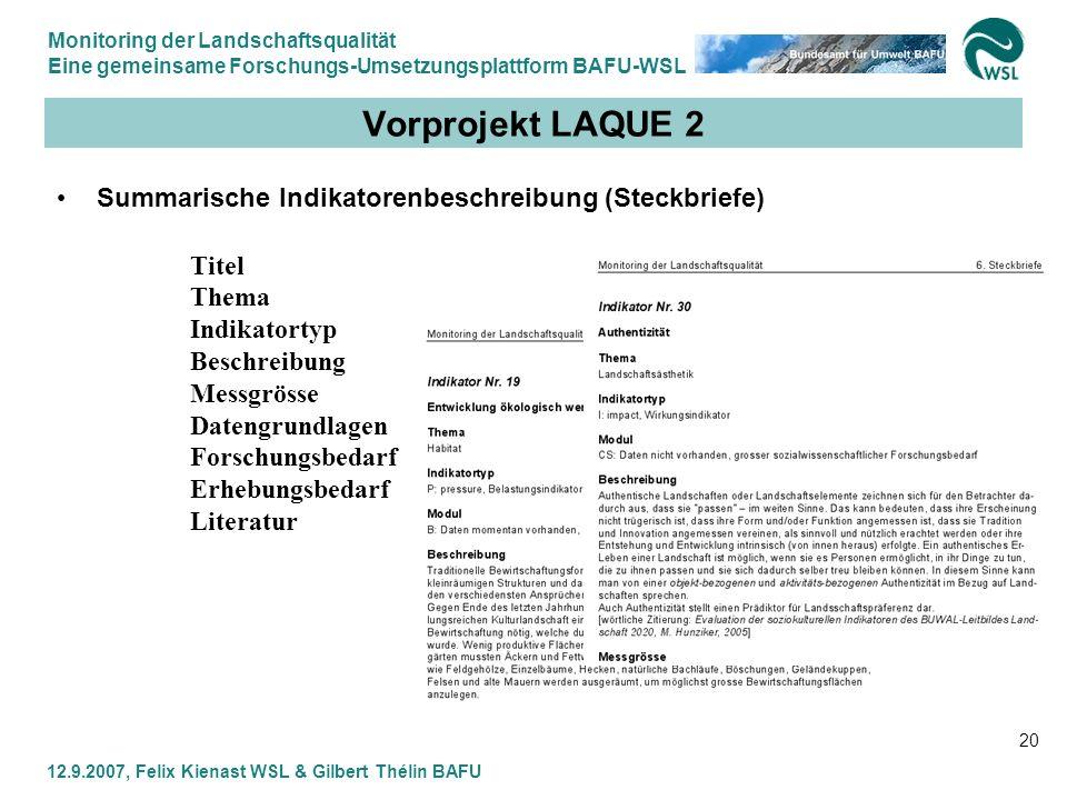 Monitoring der Landschaftsqualität Eine gemeinsame Forschungs-Umsetzungsplattform BAFU-WSL 12.9.2007, Felix Kienast WSL & Gilbert Thélin BAFU 20 Vorpr