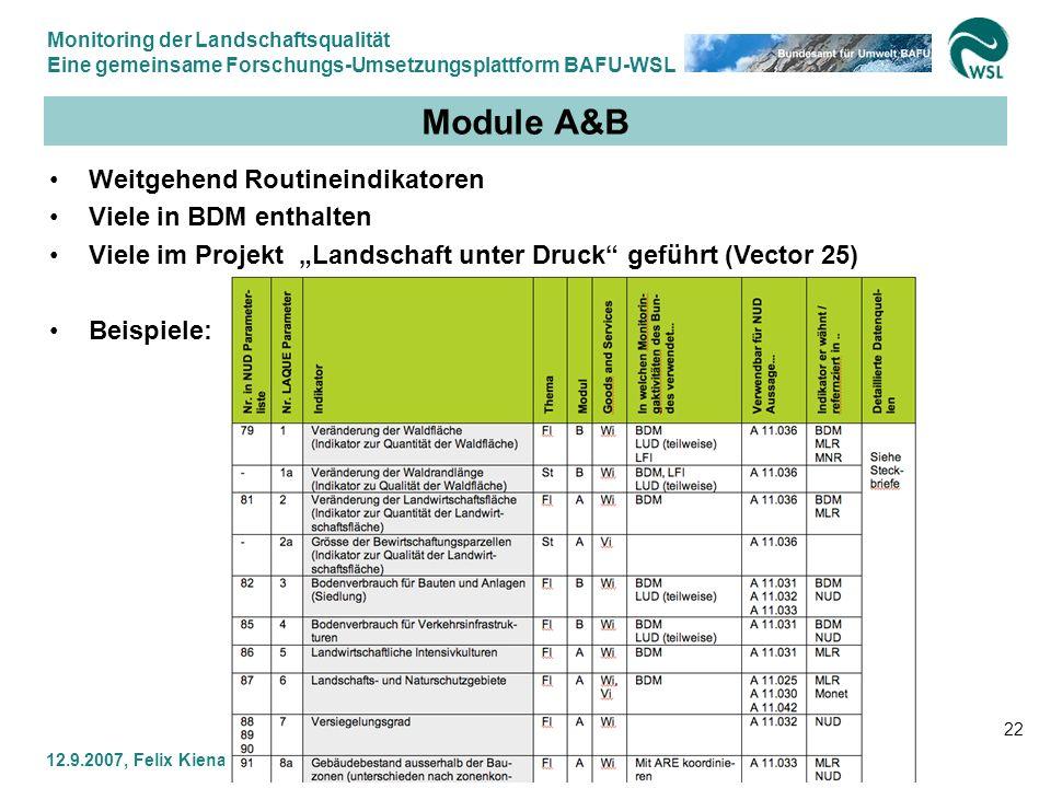 Monitoring der Landschaftsqualität Eine gemeinsame Forschungs-Umsetzungsplattform BAFU-WSL 12.9.2007, Felix Kienast WSL & Gilbert Thélin BAFU 22 Modul