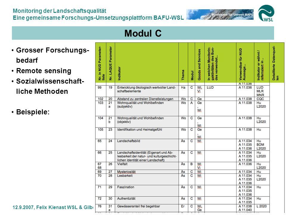 Monitoring der Landschaftsqualität Eine gemeinsame Forschungs-Umsetzungsplattform BAFU-WSL 12.9.2007, Felix Kienast WSL & Gilbert Thélin BAFU 23 Modul