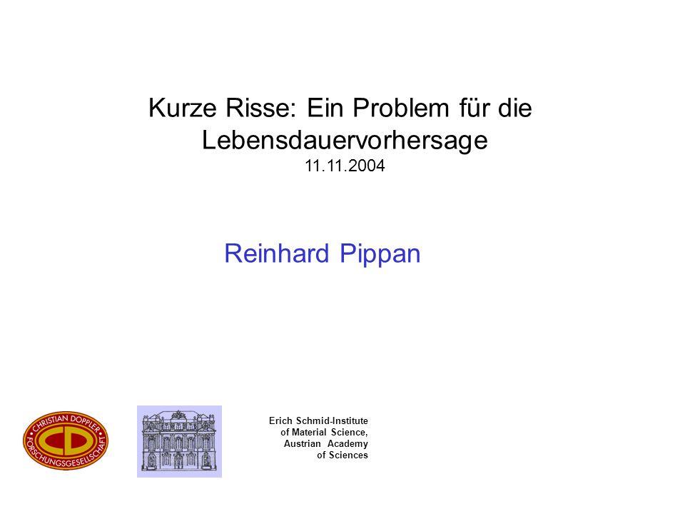 Erich Schmid-Institute of Material Science, Austrian Academy of Sciences Reinhard Pippan Kurze Risse: Ein Problem für die Lebensdauervorhersage 11.11.