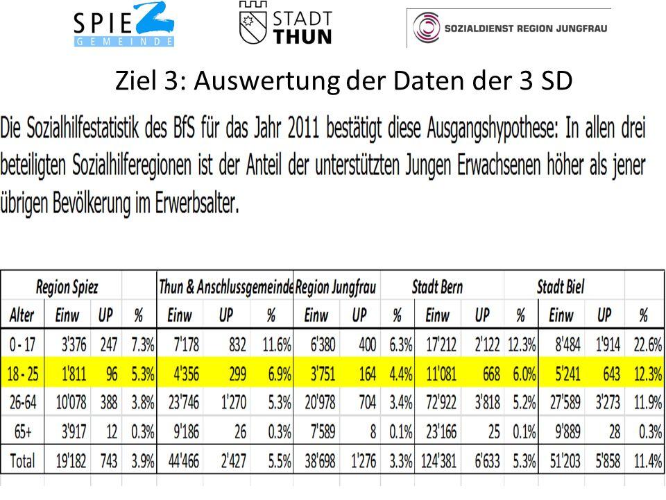Ziel 3: Auswertung der Daten der 3 SD 17Soziale Dienste Spiez