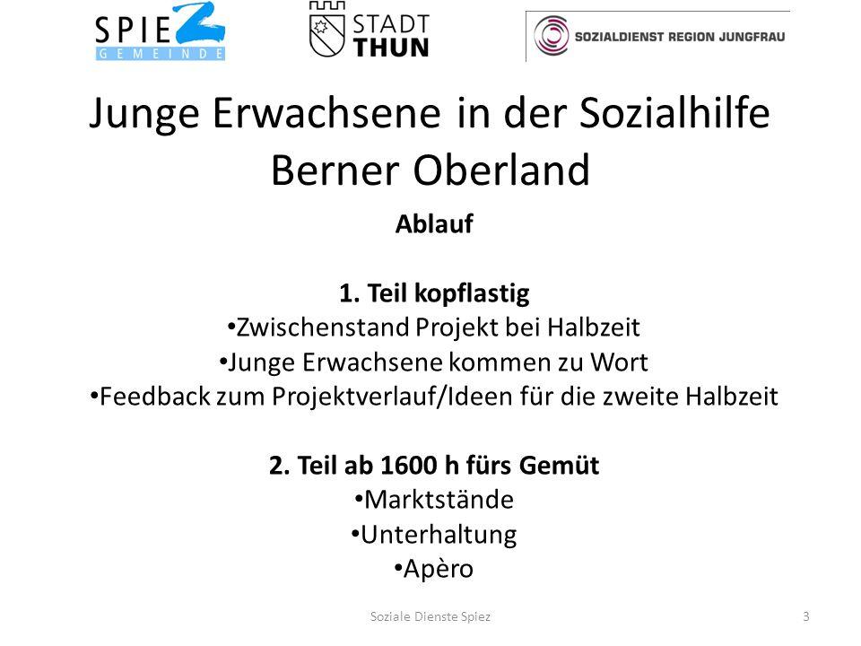 Junge Erwachsene in der Sozialhilfe Berner Oberland Ablauf 1.