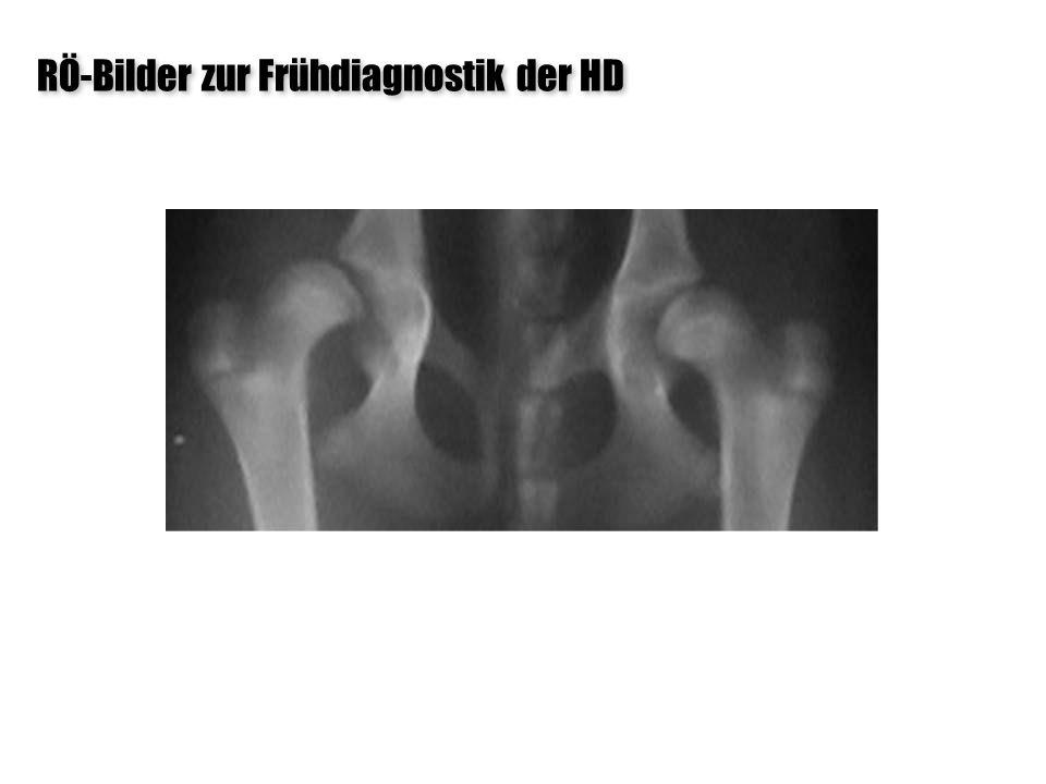 RÖ-Bilder zur Frühdiagnostik der HD 24 Wochen – DSH