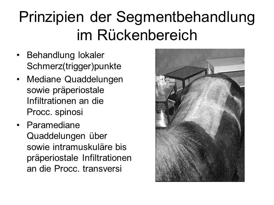 Prinzipien der Segmentbehandlung im Rückenbereich Behandlung lokaler Schmerz(trigger)punkte Mediane Quaddelungen sowie präperiostale Infiltrationen an