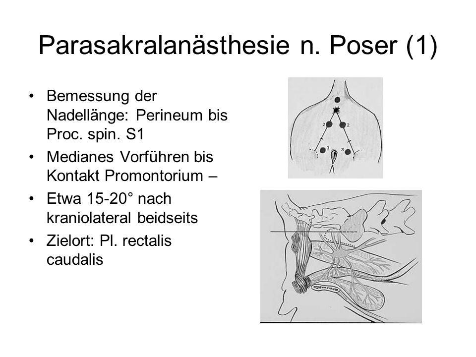 Parasakralanästhesie n. Poser (1) Bemessung der Nadellänge: Perineum bis Proc. spin. S1 Medianes Vorführen bis Kontakt Promontorium – Etwa 15-20° nach