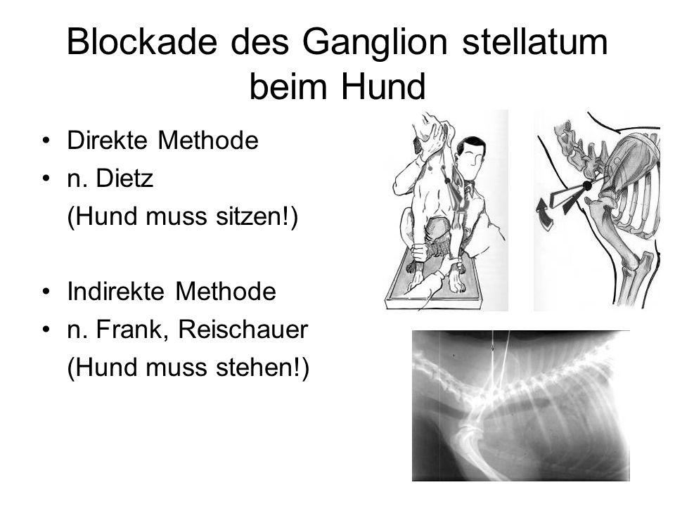 Blockade des Ganglion stellatum beim Hund Direkte Methode n. Dietz (Hund muss sitzen!) Indirekte Methode n. Frank, Reischauer (Hund muss stehen!)