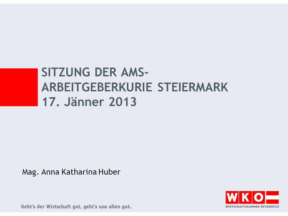 SITZUNG DER AMS- ARBEITGEBERKURIE STEIERMARK 17. Jänner 2013 Mag. Anna Katharina Huber