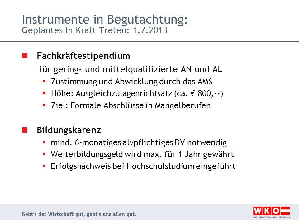Instrumente in Begutachtung: Geplantes In Kraft Treten: 1.7.2013 Fachkräftestipendium für gering- und mittelqualifizierte AN und AL Zustimmung und Abwicklung durch das AMS Höhe: Ausgleichzulagenrichtsatz (ca.
