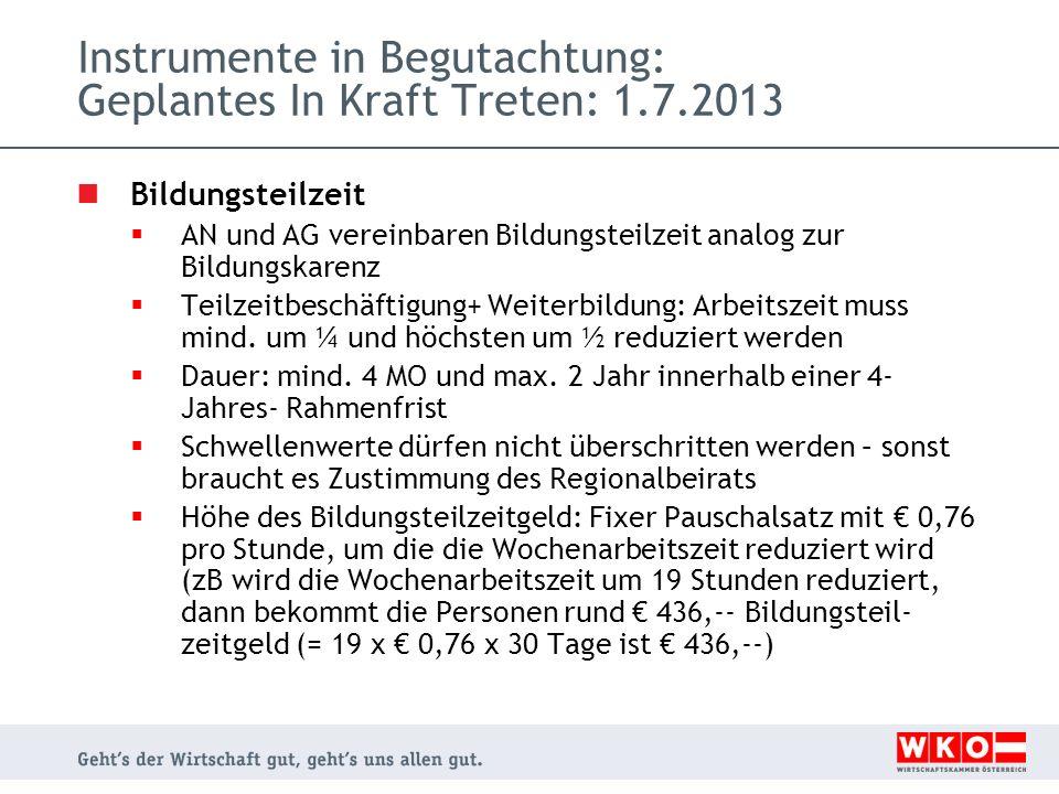 Instrumente in Begutachtung: Geplantes In Kraft Treten: 1.7.2013 Bildungsteilzeit AN und AG vereinbaren Bildungsteilzeit analog zur Bildungskarenz Tei