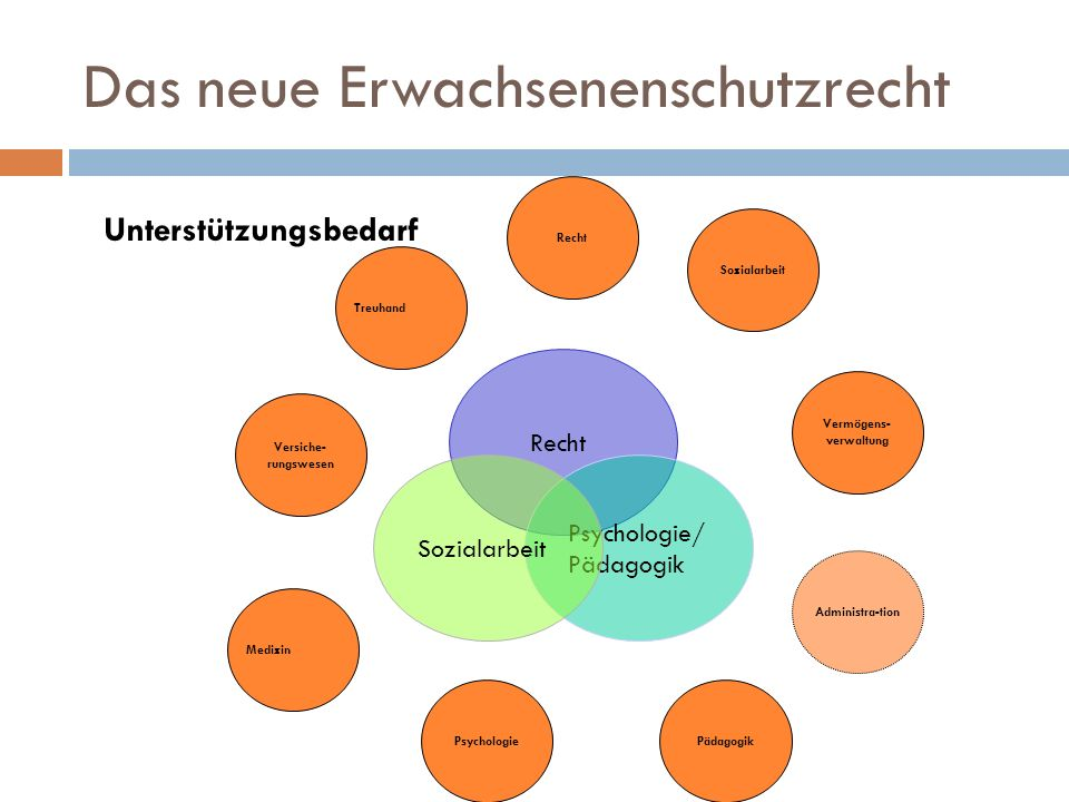 Das neue Erwachsenenschutzrecht Unterstützungsbedarf Recht Psychologie/ Pädagogik Sozialarbeit Recht Treuhand Versiche- rungswesen Medizin Psychologie