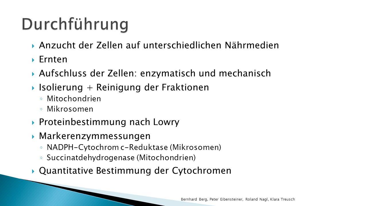 Mittels Lambert-beerschem Gesetz Wellenlängenpaar λ Basis /λ Max zur Bestimmung von ΔE Bernhard Berg, Peter Eibensteiner, Roland Nagl, Klara Treusch