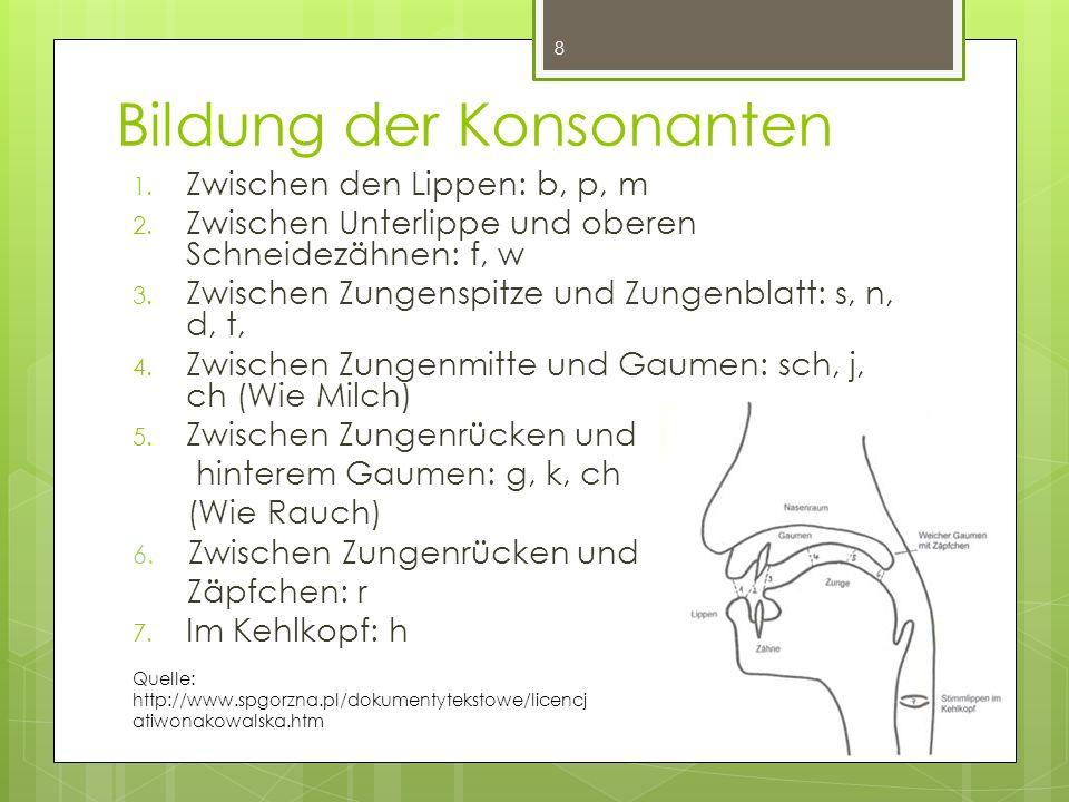 Bildung der Konsonanten 1.Zwischen den Lippen: b, p, m 2.