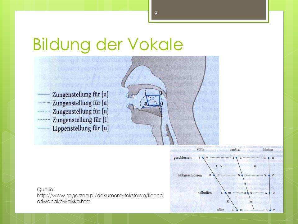 Bildung der Vokale 9 Quelle: http://www.spgorzna.pl/dokumentytekstowe/licencj atiwonakowalska.htm