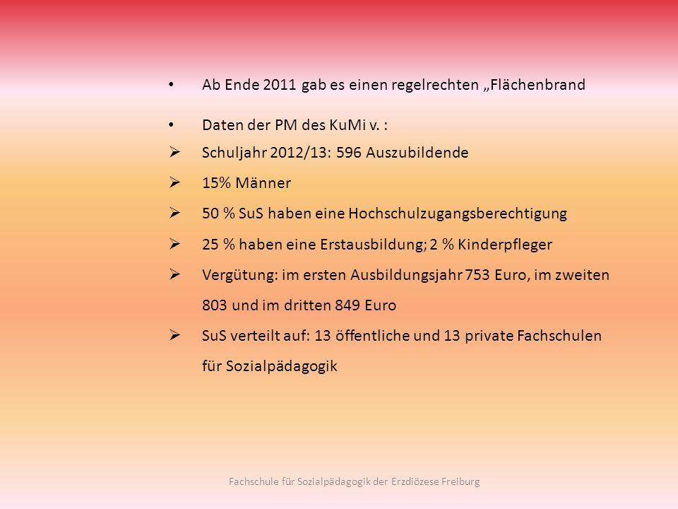Ab Ende 2011 gab es einen regelrechten Flächenbrand Daten der PM des KuMi v. : Schuljahr 2012/13: 596 Auszubildende 15% Männer 50 % SuS haben eine Hoc