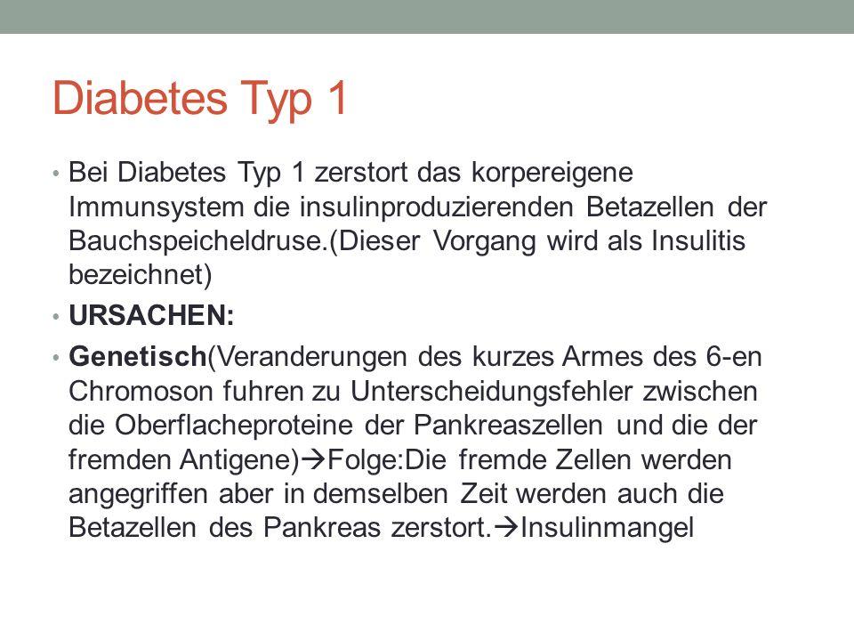 Umweltfaktoren: -Konsum von Kuhmilch bei Babys -Fruhe Exposition gegenuber Protein Gluten(in Getreide zu finden) -Diabetogene(Diabetes auslosende Viren)-Coxsackie-B- Viren,intrauterine Rotelninfektion mit dem Rubivirus(50% der Falle fuhrt zu Diabetes),Echoviren SYMPTOME -Gewichtsabnahme innerhalb von Tagen oder ein paar Wochen -Austrocknung -standigem Durstgefuhl -Erbrechen -Mudigkeit,Kraftlosigkeit,Sehstorungen, Konzentrationsstorungen
