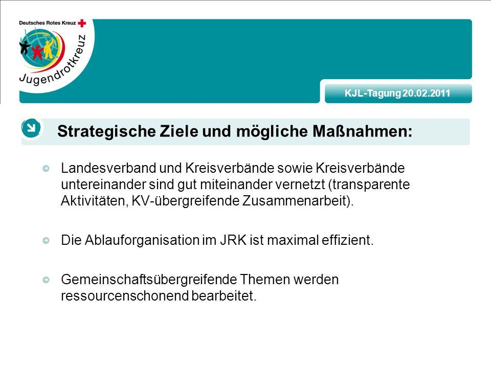 KJL-Tagung 20.02.2011 Landesverband und Kreisverbände sowie Kreisverbände untereinander sind gut miteinander vernetzt (transparente Aktivitäten, KV-übergreifende Zusammenarbeit).