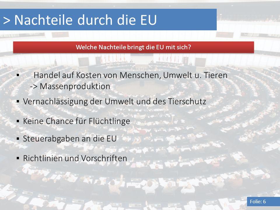 > Nachteile durch die EU Folie: 6 Welche Nachteile bringt die EU mit sich? Handel auf Kosten von Menschen, Umwelt u. Tieren -> Massenproduktion Vernac
