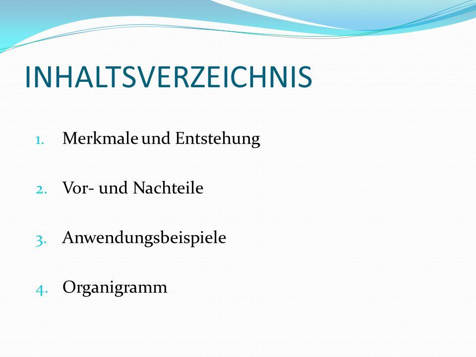 INHALTSVERZEICHNIS 1. Merkmale und Entstehung 2. Vor- und Nachteile 3. Anwendungsbeispiele 4. Organigramm