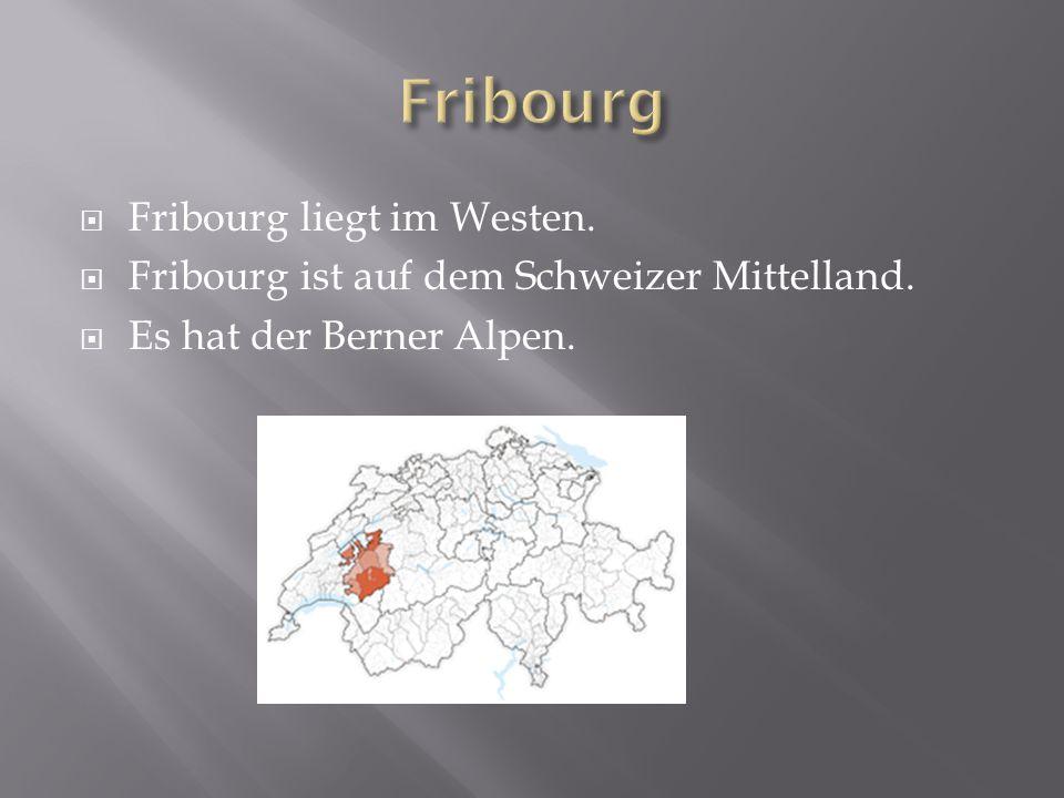 Fribourg liegt im Westen. Fribourg ist auf dem Schweizer Mittelland. Es hat der Berner Alpen.