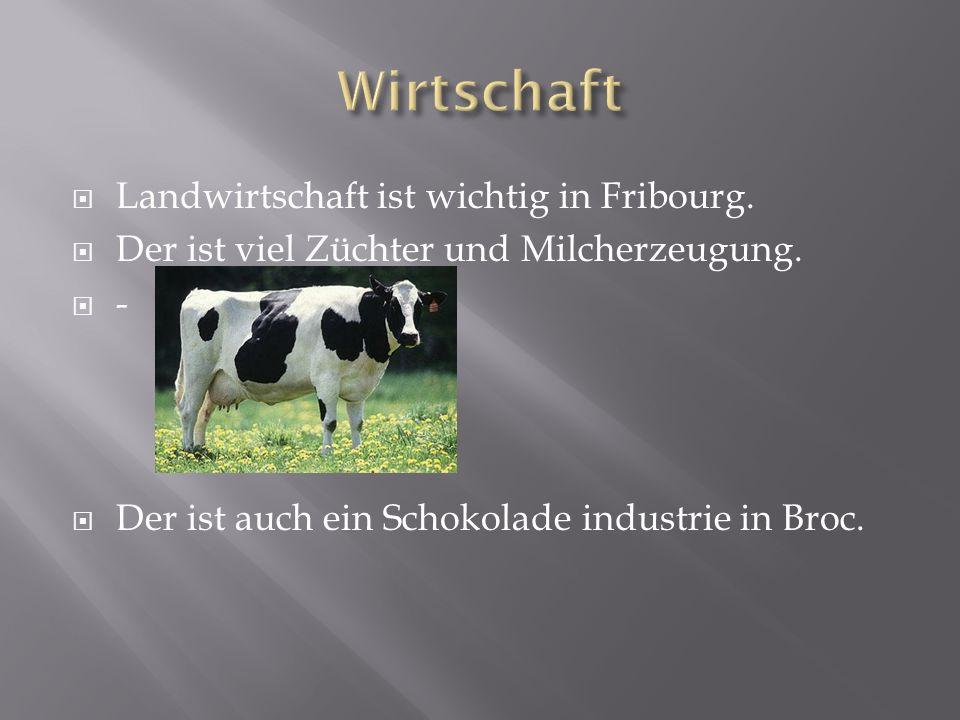Landwirtschaft ist wichtig in Fribourg. Der ist viel Züchter und Milcherzeugung.