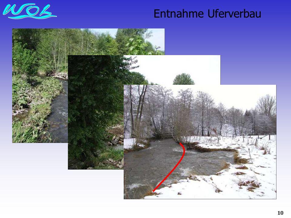 10 Entnahme Uferverbau