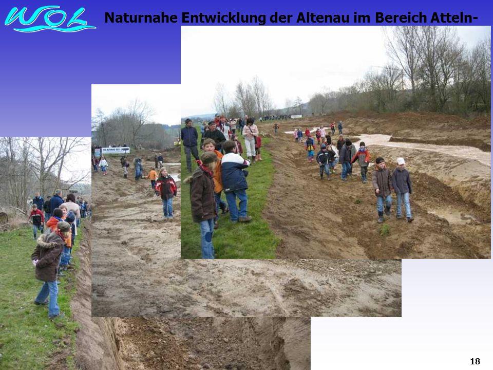 18 Naturnahe Entwicklung der Altenau im Bereich Atteln- Grüner Graben 2008 :