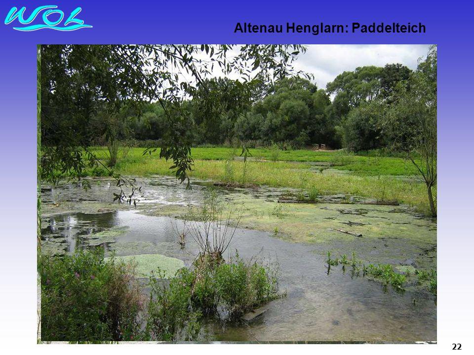 22 Altenau Henglarn: Paddelteich