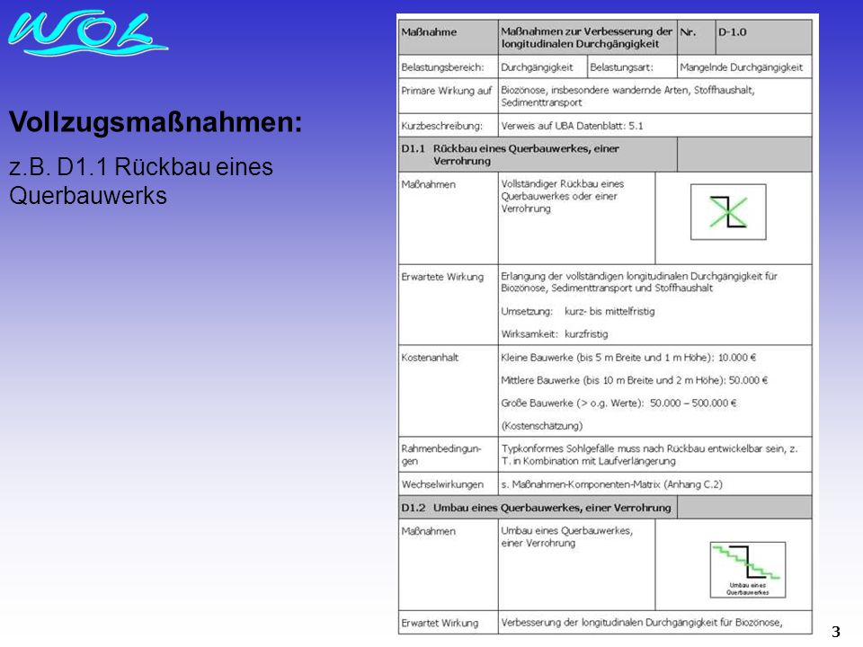 3 Vollzugsmaßnahmen: z.B. D1.1 Rückbau eines Querbauwerks