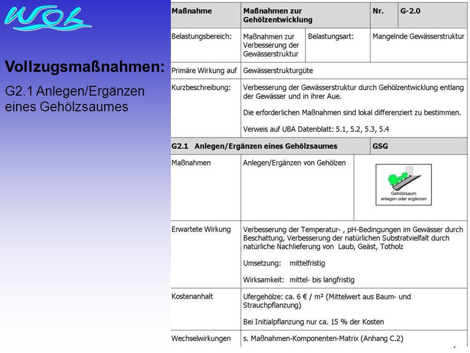 7 Vollzugsmaßnahmen: G2.1 Anlegen/Ergänzen eines Gehölzsaumes