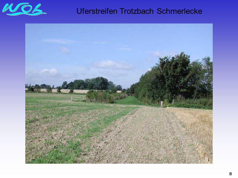 8 Uferstreifen Trotzbach Schmerlecke