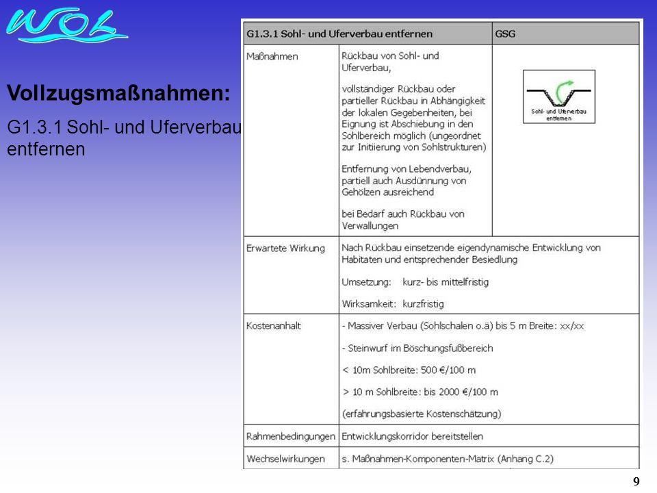 9 Vollzugsmaßnahmen: G1.3.1 Sohl- und Uferverbau entfernen