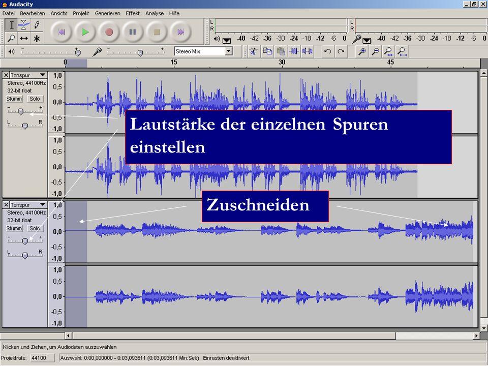 Zuschneiden Lautstärke der einzelnen Spuren einstellen