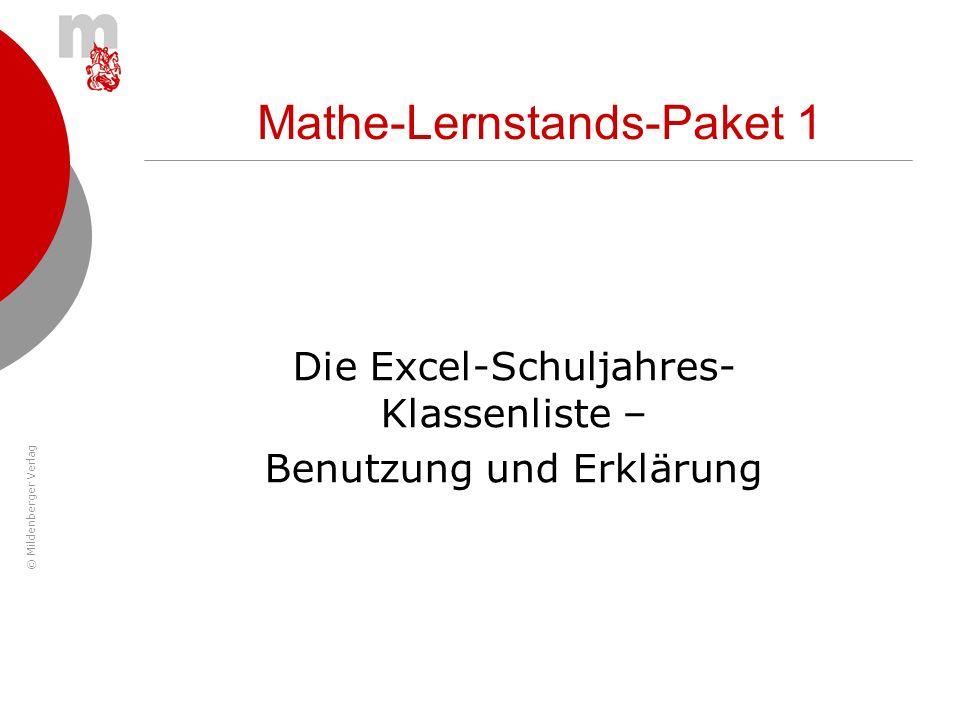© Mildenberger Verlag Mathe-Lernstands-Paket 1 Die Excel-Schuljahres- Klassenliste – Benutzung und Erklärung