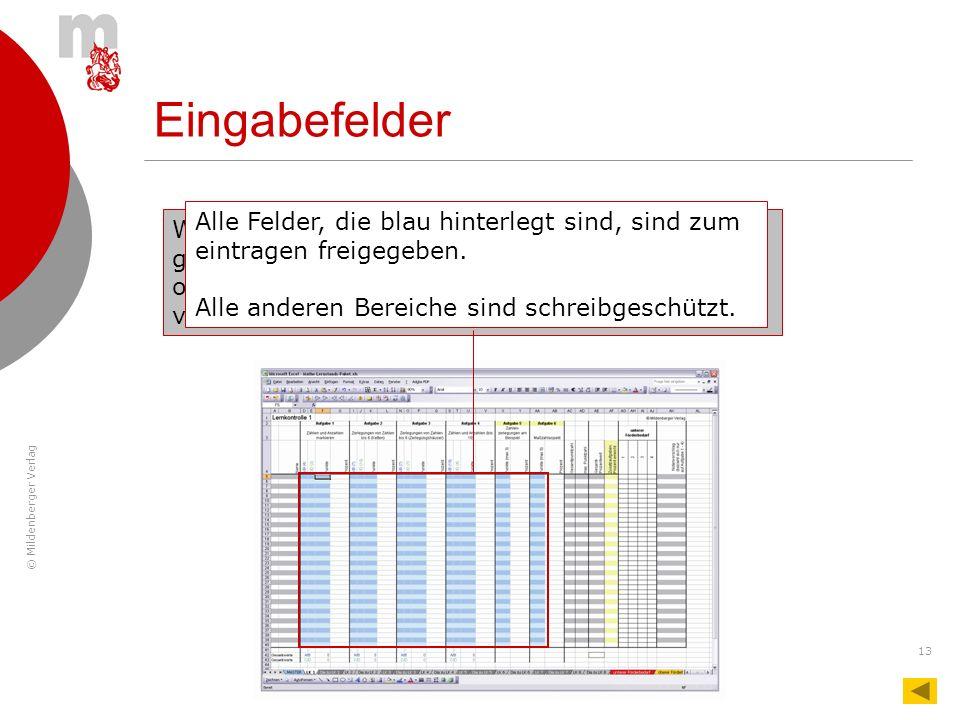 © Mildenberger Verlag 13 Eingabefelder Wichtig: Die blauen Bereiche sind nicht geschützt. Inhalte können aus Versehen gelöscht oder Kästchen bei unsac