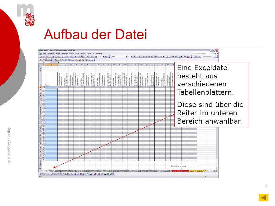 © Mildenberger Verlag 7 Aufbau der Datei Eine Exceldatei besteht aus verschiedenen Tabellenblättern. Diese sind über die Reiter im unteren Bereich anw