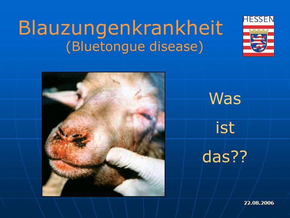 22.08.2006 Blauzungenkrankheit (Bluetongue disease) Was ist das??