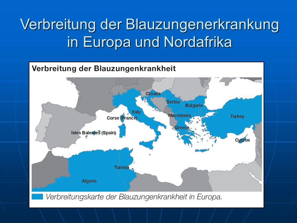 Verbreitung der Blauzungenerkrankung in Europa und Nordafrika