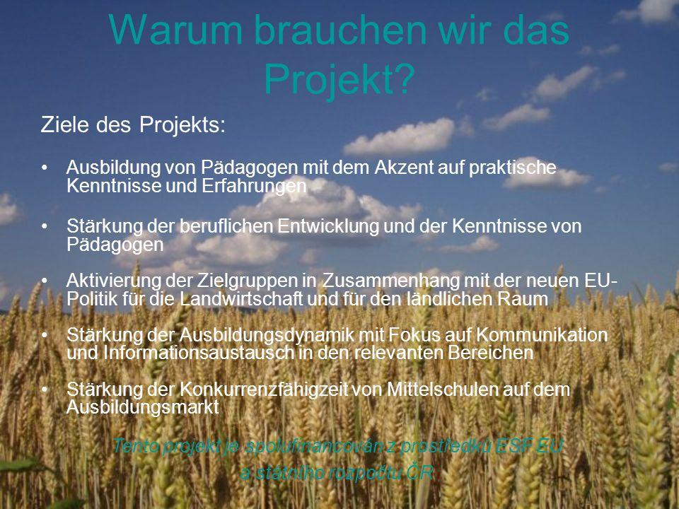 Warum brauchen wir das Projekt? Ziele des Projekts: Ausbildung von Pädagogen mit dem Akzent auf praktische Kenntnisse und Erfahrungen Stärkung der ber