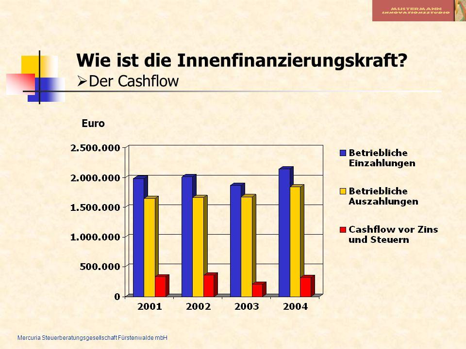 Mercuria Steuerberatungsgesellschaft Fürstenwalde mbH Wie ist die Innenfinanzierungskraft? Der Cashflow Euro