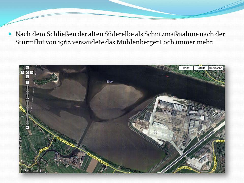 Im Zuge der Erweiterung des Airbus-Geländes, um den Bau des Airbus A380 auch in Hamburg zu ermöglichen, wurde ein Fünftel des Mühlenberger Loches zugeschüttet.
