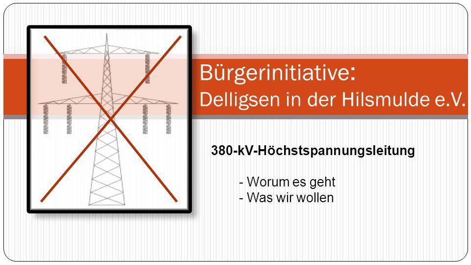Bürgerinitiative : Delligsen in der Hilsmulde e.V. 380-kV-Höchstspannungsleitung - Worum es geht - Was wir wollen